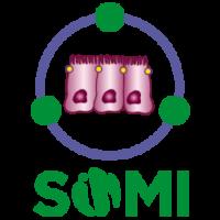 sINMI-250x250
